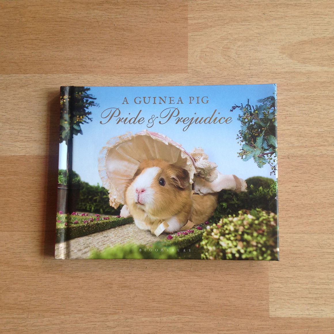 Guinea Pig gifts, the classic Jane Austen story re-told with Guinea pigs!
