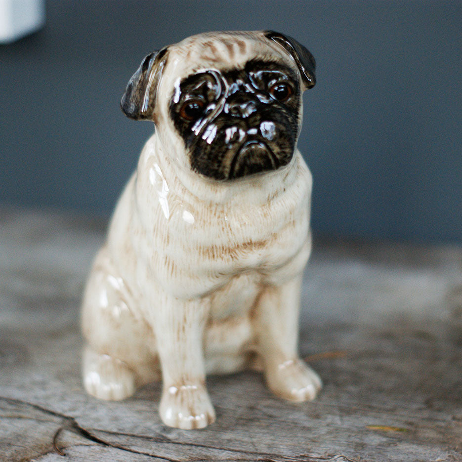 pug money bank