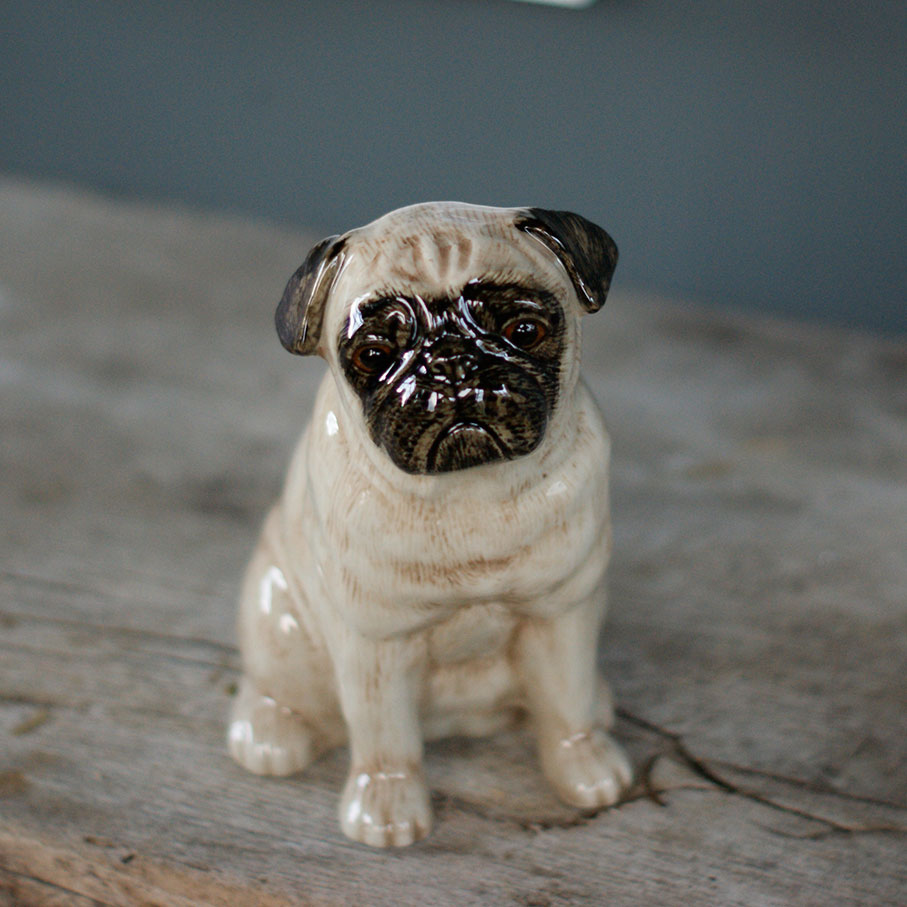 Pug Fawn money box
