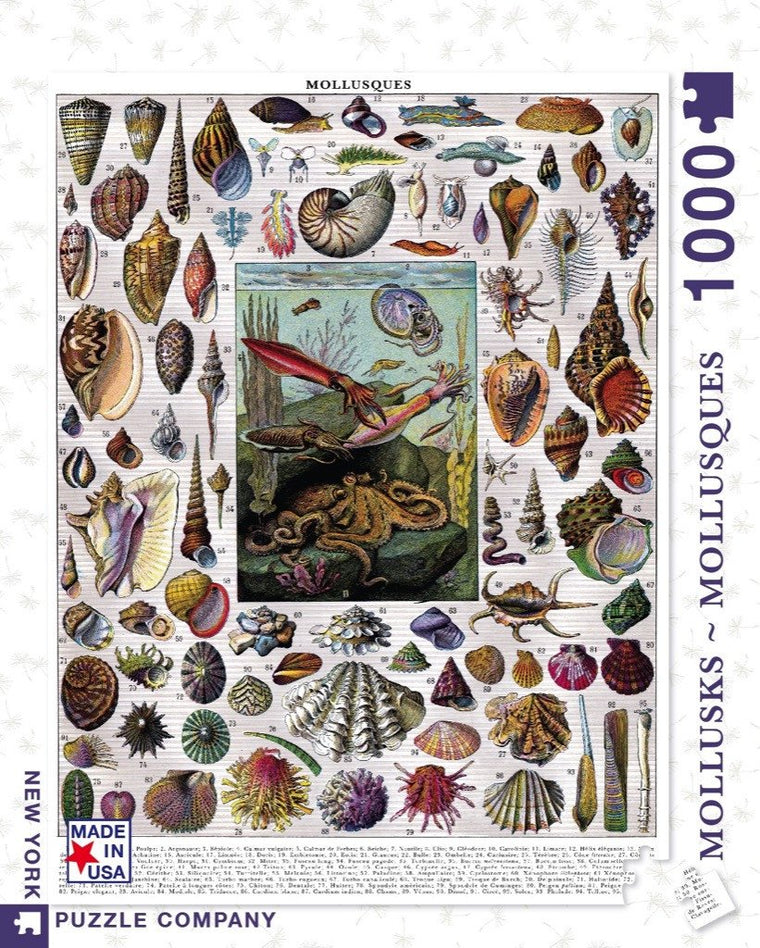1000 piece Mollusks Jigsaw Puzzle