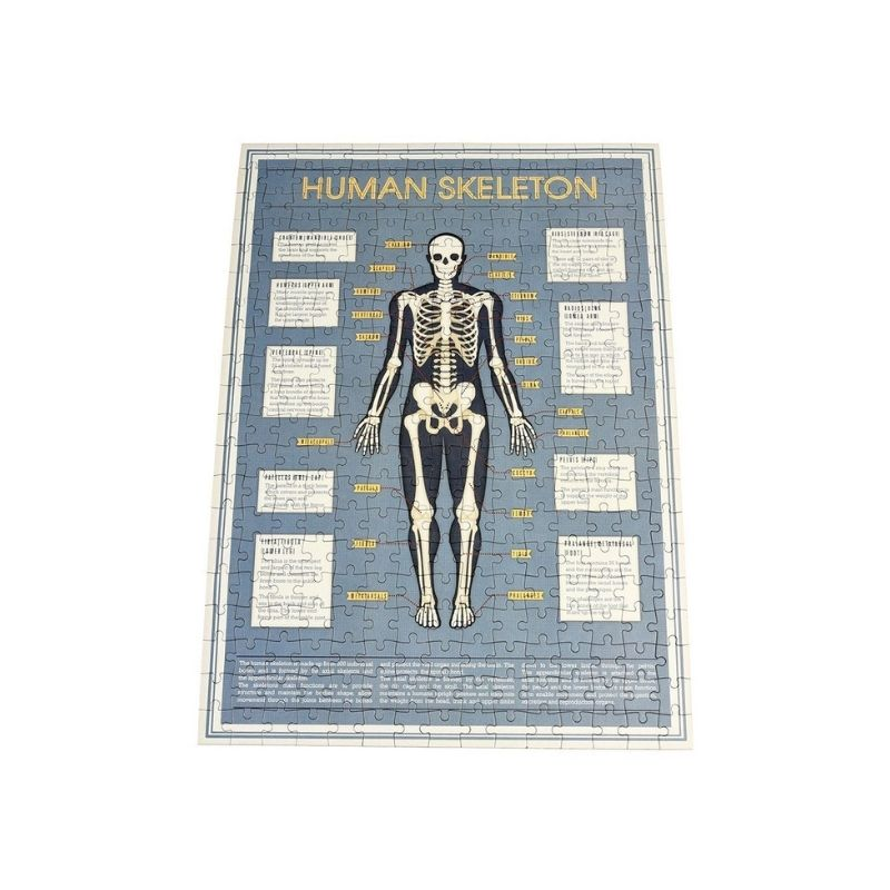 Skeleton Jigsaw Puzzle - 300 pieces