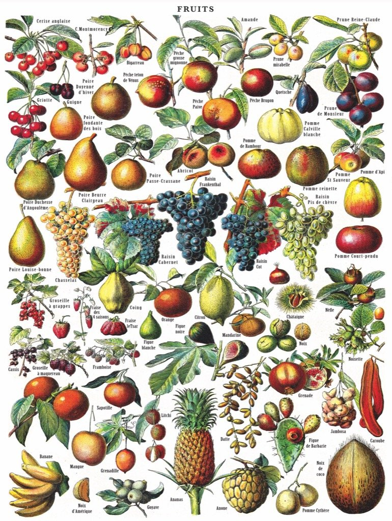 Fruits Jigsaw Puzzle - 1000pc