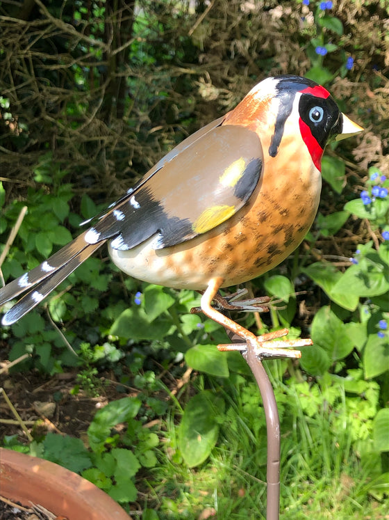 Bird Garden Decoration - Gold Finch