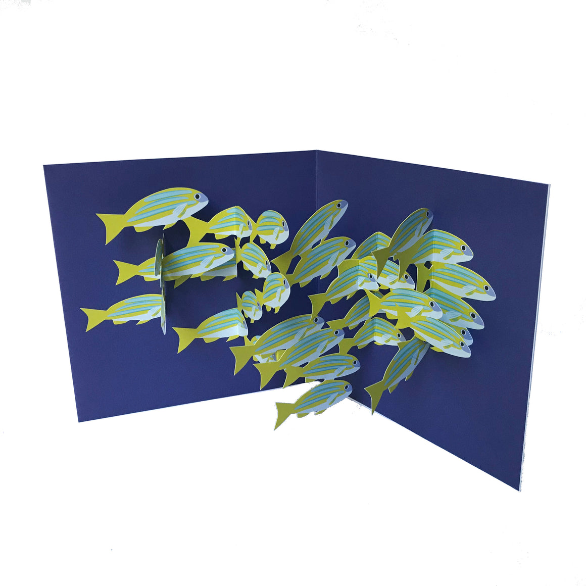 School of Fish Pop Up 3D card