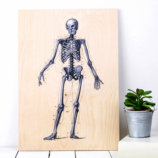 Skeleton wooden print- for the home