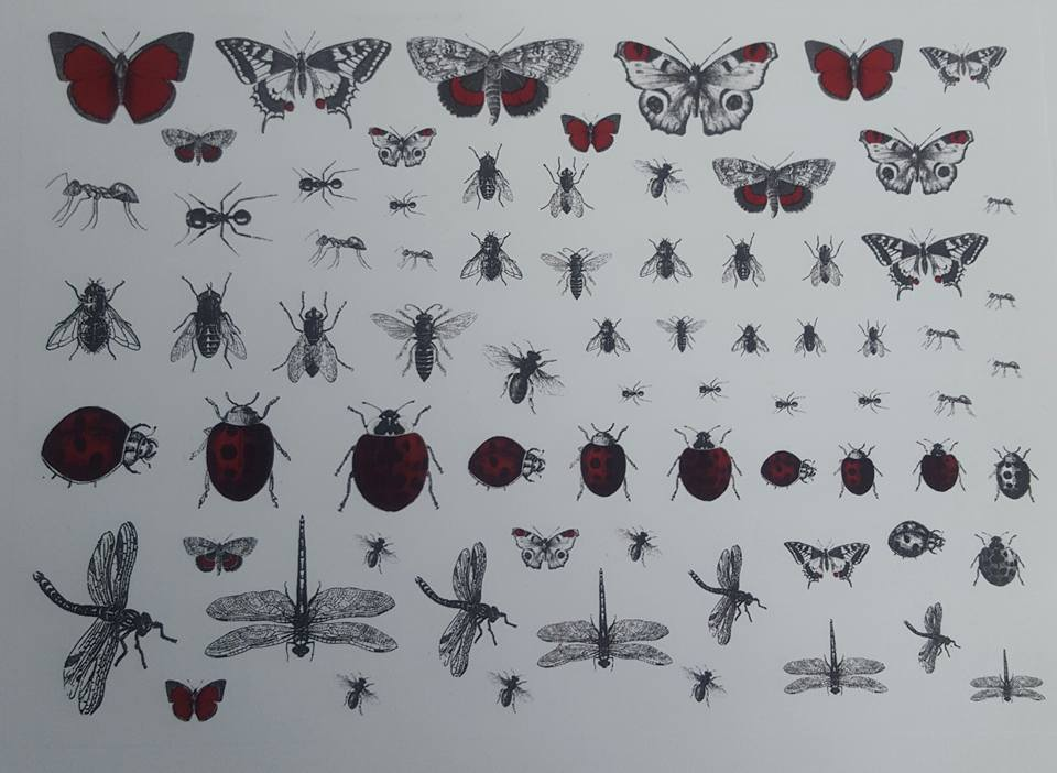 Creepy Crawlies - Red and black