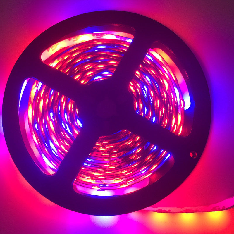 LED Plant Grow Light 5050 LED Flexible Strip DC12V Red Blue 4:1 for Greenhouse Hydroponic Plant Growing Lamp 5m/lot