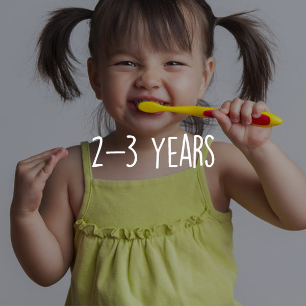 Cognitive 2-3 Years