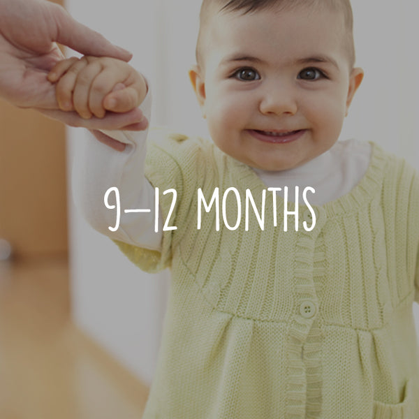 Social & Emotional 9-12 months