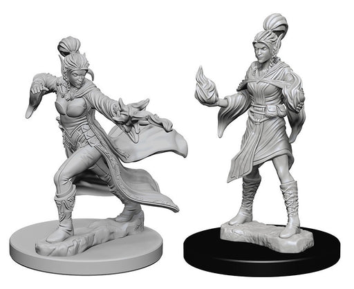 Deep Cuts Pathfinder Unpainted Miniatures Elf Female Sorcerer