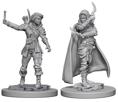 Deep Cuts Pathfinder Unpainted Miniatures Human Female Rogue