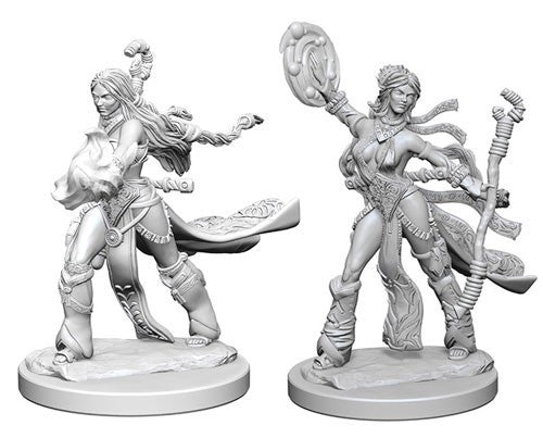 Deep Cuts Pathfinder Unpainted Miniatures Human Female Sorcerer