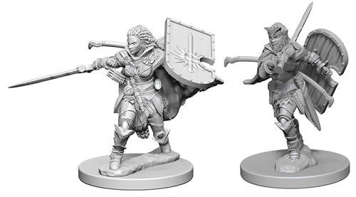 Deep Cuts Pathfinder Unpainted Miniatures Human Female Paladin