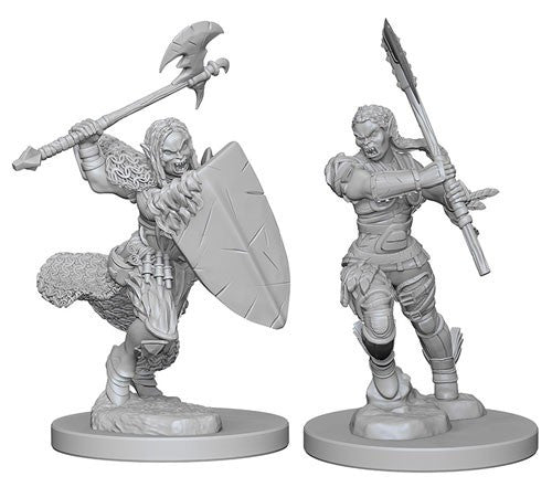 Deep Cuts Pathfinder Unpainted Miniatures Half-Orc Female Barbarian