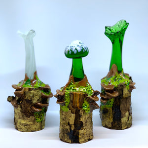 Mushrooms by Sarah Band