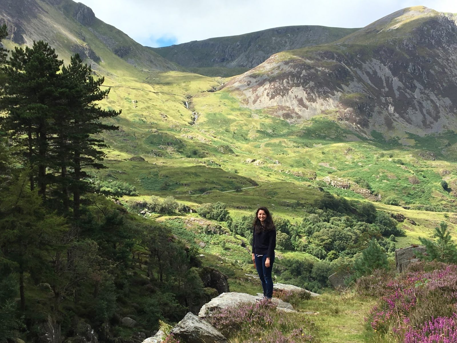 Missions in Wales: A Conversation with Joy Williams