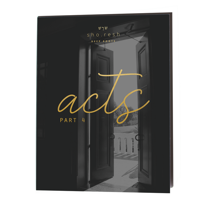 Acts: Part 4