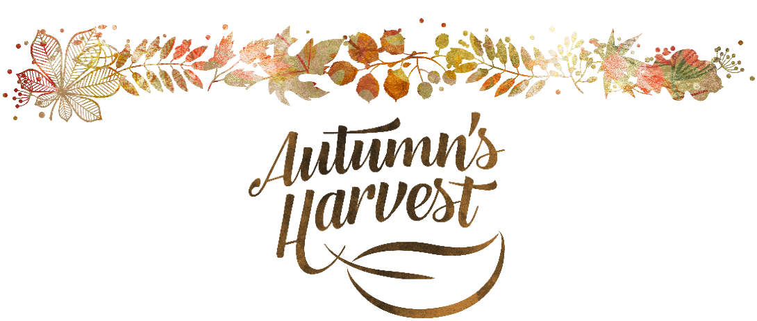 Autumn's Harvest Soap