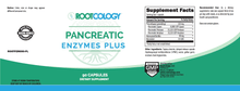 Pancreatic Enzymes Plus - Rootcology