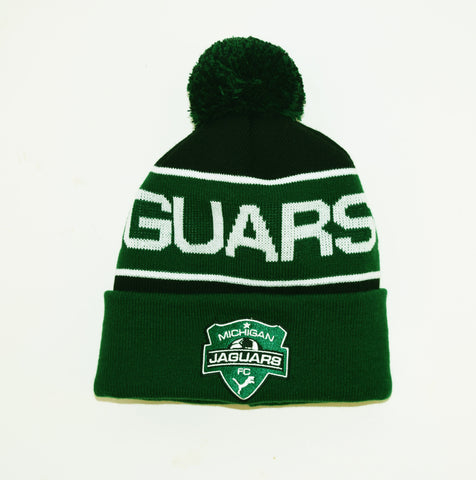 Michigan Jaguars Logo Cuff Knit Pom Hat