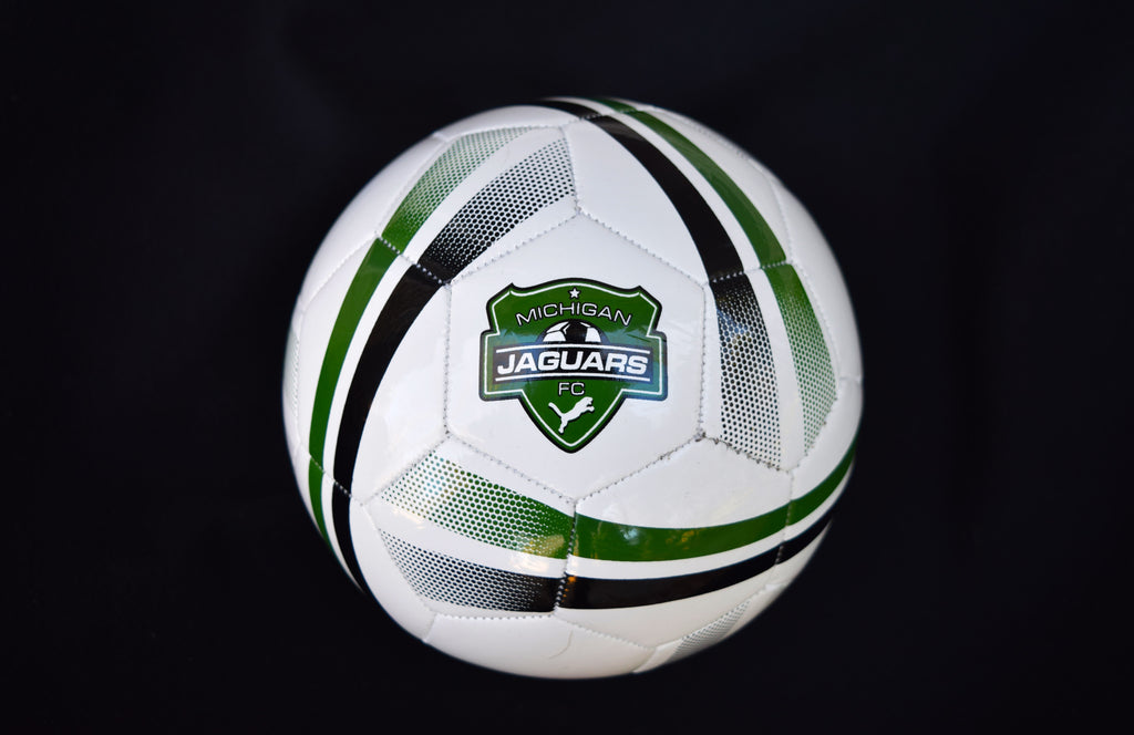 Michigan Jaguars Logo Skills Soccer Ball Size #2