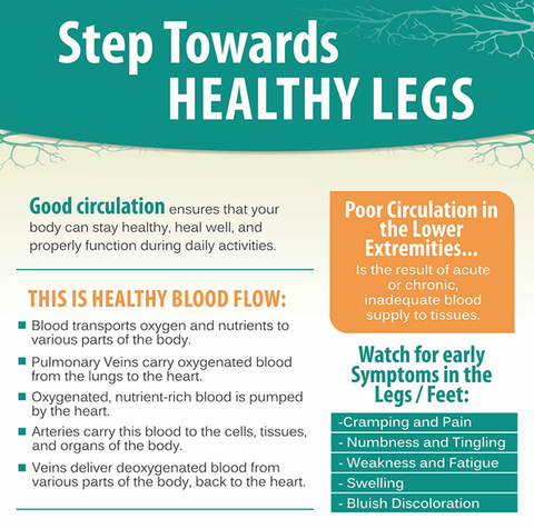 Healthy Legs Infographic