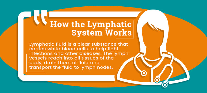 how lymphatic system works quote