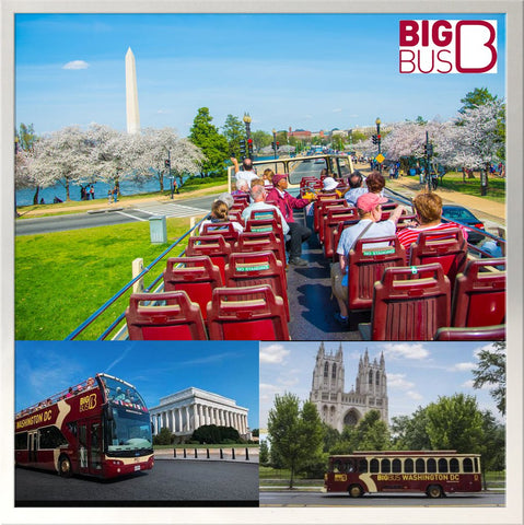Big Bus - 2 Day Deluxe Tour