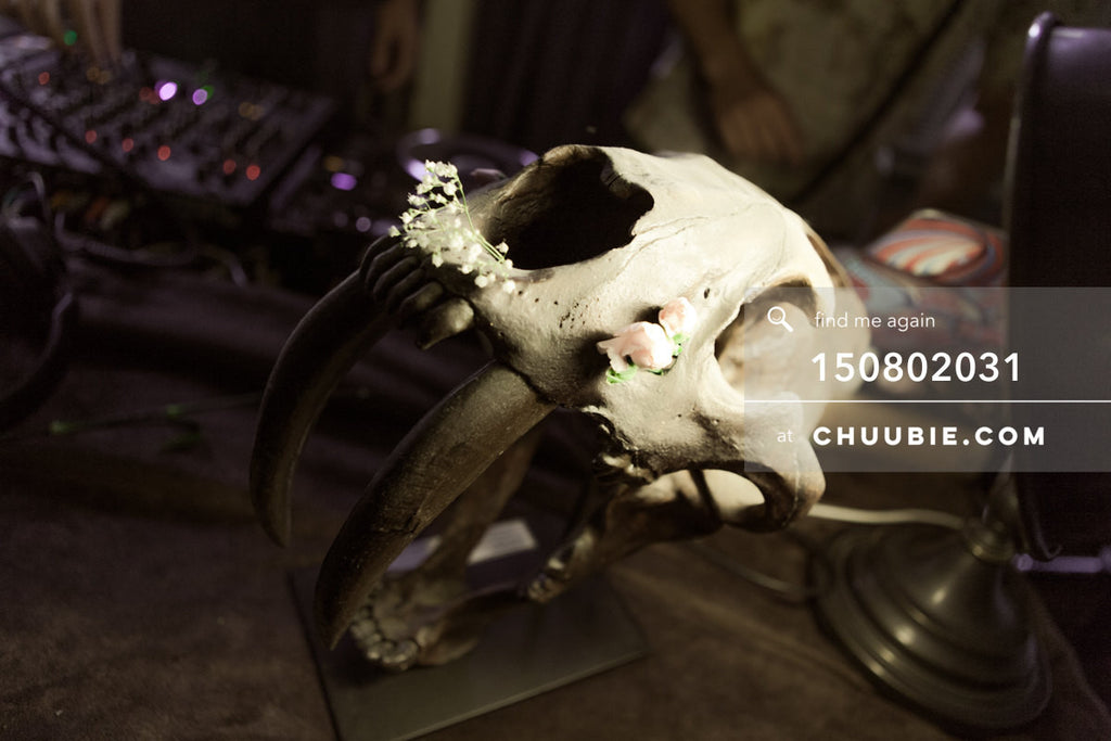 150802031 | Animal skull with flowers still life in historic LES house. —Team Fun BBQ hosted by Sublimate &am... | Team Chuubie
