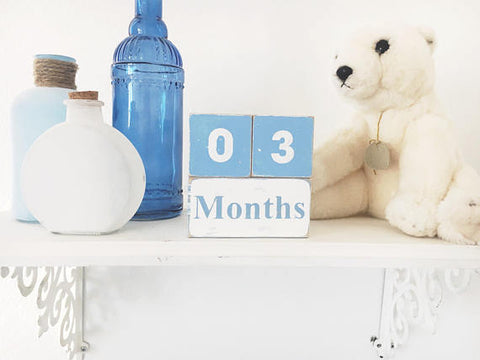 "The ""Hand-Painted Vintage"" Baby Milestone Blocks ***more colors***"