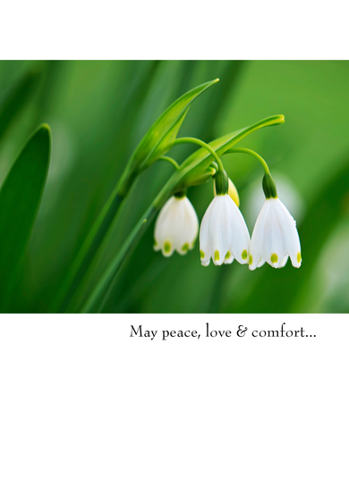 CARD - SYMPATHY - PEACE, LOVE & COMFORT