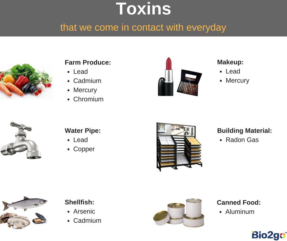 toxins in everyday products