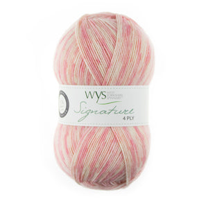 Load image into Gallery viewer, WYS Signature 4ply - Mrs Snufflebean