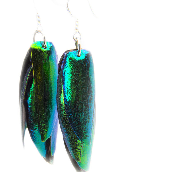 Jewel Wing Dangle Earrings Iridescent blue green made in USA