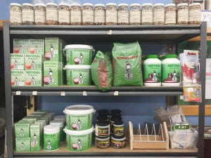 Pigeon Feed & Accessories