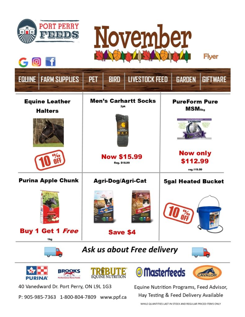 Monthly Sale Flyer