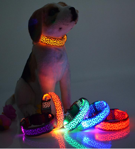 (On Sale) Solid Color Nylon  Led Dog Collar %50 off  Plus FREE Shipping!