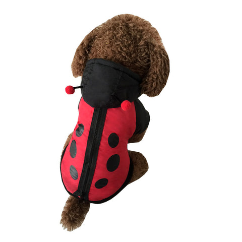 Cute Ladybug windbreaker Style Pet Dogs  Coat  !Free Shipping