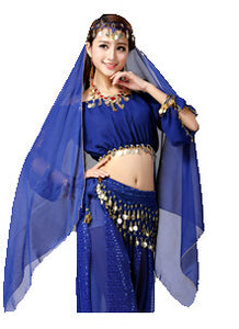 Belly Dancer/Aladdin Princess Jasmine Costume Adults(only top+pants)