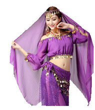 Load image into Gallery viewer, Belly Dancer/Aladdin Princess Jasmine Costume Adults(only top+pants)