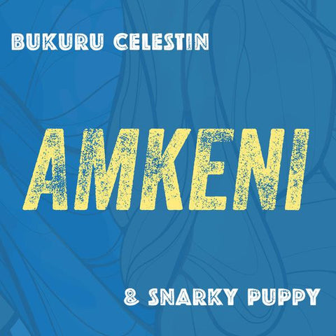 Amkeni [FLAC download]