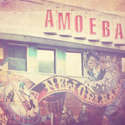 photograph of Amoeba Music