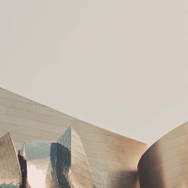 Walt Disney Concert Hall photograph