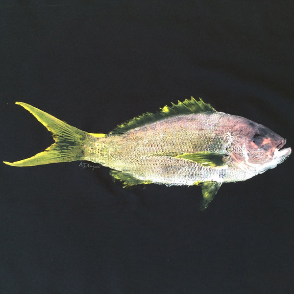 Original Gyotaku Fish Rubbing YellowTail Snapper