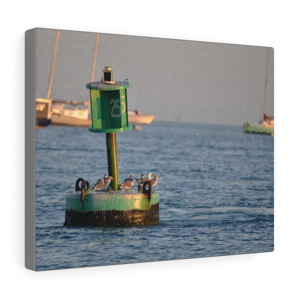 Birds on a Buoy photo wall art canvas