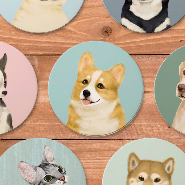IMIN Pet friendly city series absorbent ceramic coasters