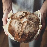 San Francisco Sourdough Bread Starter - Pie 66  - concept shop by Bucket & Bay Craft Gelato Co