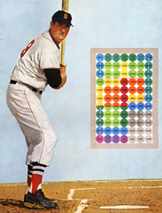 ted williams plate coverage