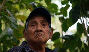 Coffee farmer in Chiapas, Mexico.