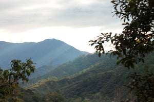 Highands of Chiapas, Mexico where our coffee is grown.